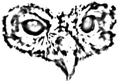 logo-axena