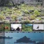 Galicia Salvaxe, estreno de serie de documental sobre la naturaleza gallega