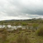 Un día en la Laguna de Cospeito