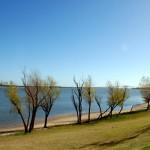 Paseando por el Río Uruguay II