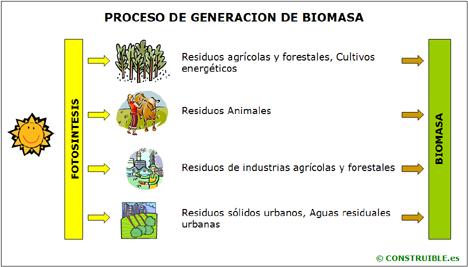 Obtención de energía a partir de fuentes de biomasa