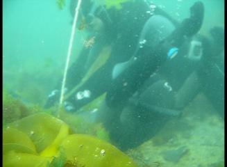 rescate_submarino_quitando_plomos