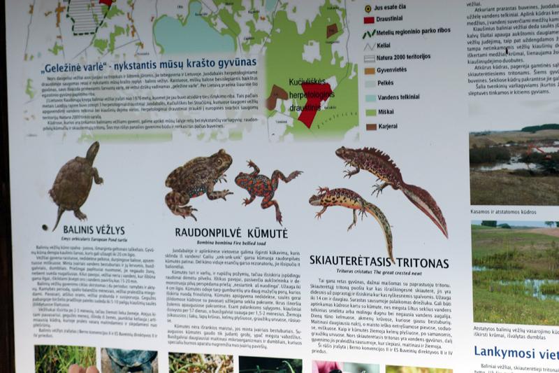 Cartel informativo sobre las especies objetivo del proyecto