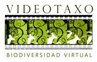 videotaxo