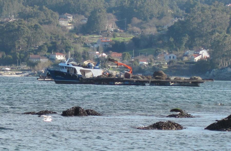 batea y barco mejillonero
