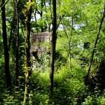 Ruta da Broa- Vilaboa