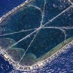 Acuicultura VII: Cultivo de peces