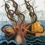 Ecología Azul: ¡Vaya calamar!