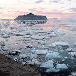 El deshielo de los polos, ¿aires de extinción de especies?