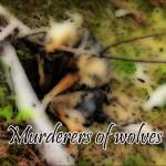 Asesinos de Lobos en el Barbanza (XIV): Murderers of Wolves