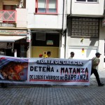 Asesinos de Lobos en el Barbanza (XXVIII): marcha y manifestación en Santiago
