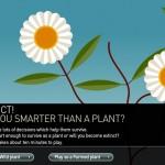 ¿Eres más listo que una planta?