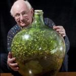 Un ecosistema en una botella