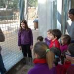 Visita al Centro de Recuperación de Fauna Silvestre