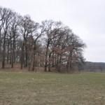La fría Alemania