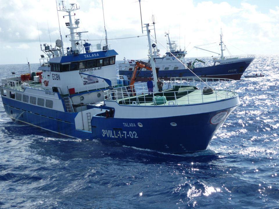 Buque pesquero de Ribeira, el Talasa, donde se encontró el tiburón de dos cabezas.
