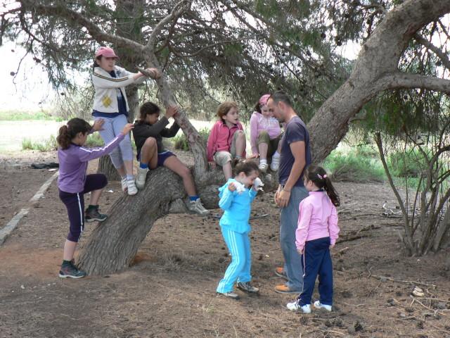 Con un sólo árbol y un poco de imaginación, eso es todo lo que necesitan los niños para divertirse.