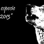 El Lobo, especie del año 2013 por AXENA