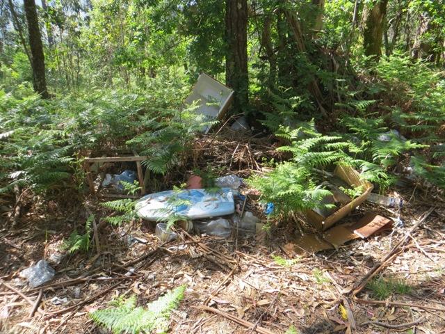 Restos de basura domestica: tabla de planchar, cajas, una nevera, caballetes...