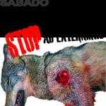 Asesinos de Lobos en el Barbanza (V): la manifestación sábado 28 abril!!!