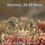 Jornada de formación del programa SARE en Ourense