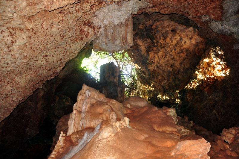 Entada cova des pont