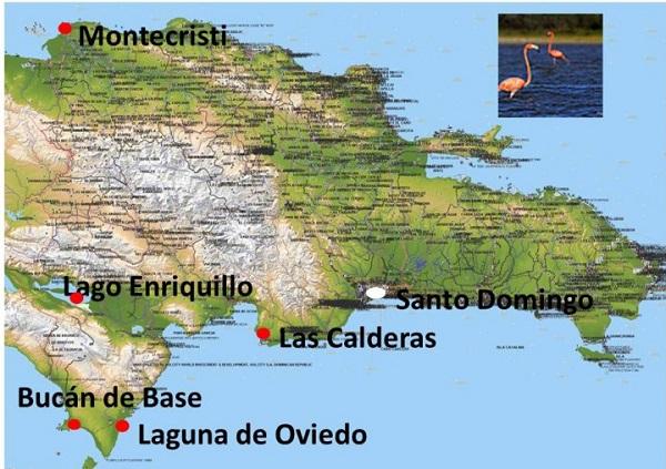 Distribución del Flamenco del Caribe, en República Dominicana.