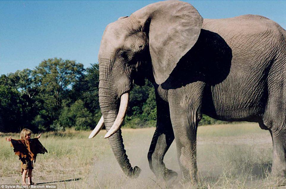 tippi-new-mowgli-elephant4