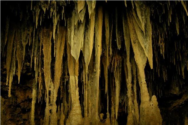 Las banderas son otras espeleoformas producidas por las corrientes de aire en la cueva