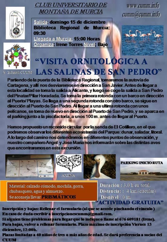 Cartel Salinas de San Pedro