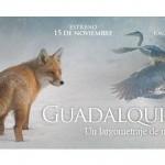 """Felices Fiestas con """"Guadalquivir"""""""