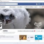1000 amigos en facebook