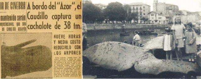 Cachalotes Franco Pasajes y Bermeo