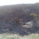 La Xunta de Galicia provoca un gran incendio en la Sierra del Barbanza
