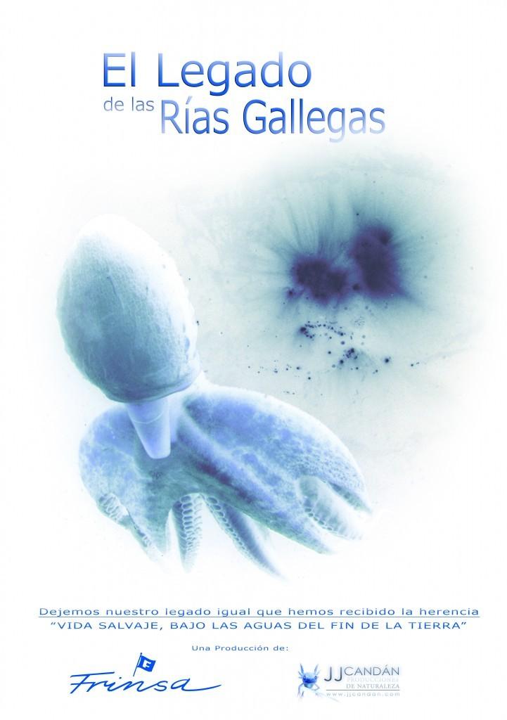 legado_rias_gallegas_frinsa