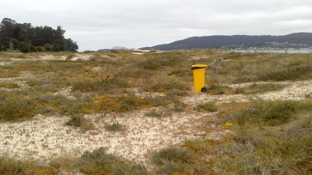 13 Testal cubo basura medio de la duna
