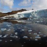 Antartica, libre y salvaje